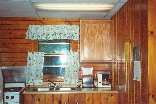 Cabin 20 kitchen